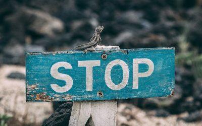 KATA, Egyéni vállalkozás szüneteltetése, újraindítása [2020]